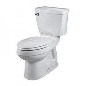 The Champion 4 toilet from American Standard
