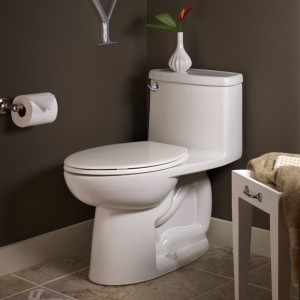 The Cadet 3 FloWise 1-piece High Efficiency Toilet (HET)