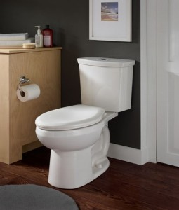 H2Option dual flush toilet from American Standard