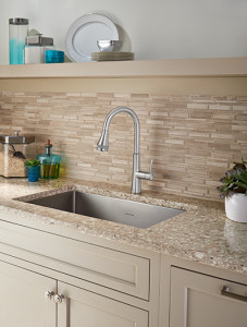 Huntley SelectfFo Kitchen Faucet